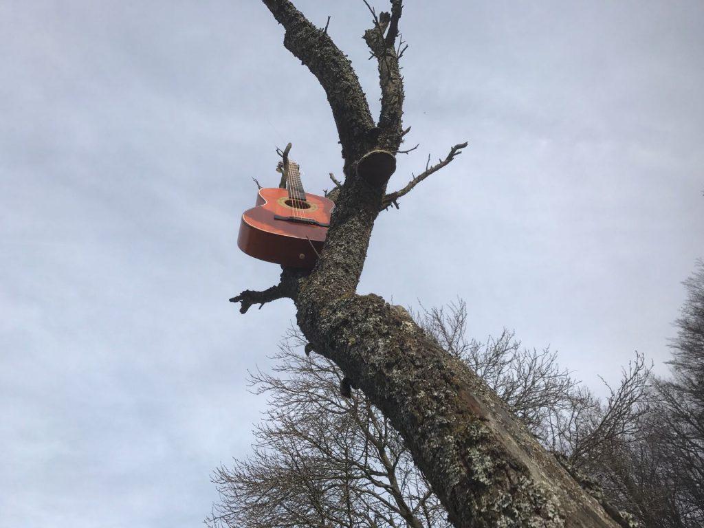 Ferienwohnungen in Haiger - Gitarre im Baum