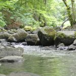 Haiger - Fluss